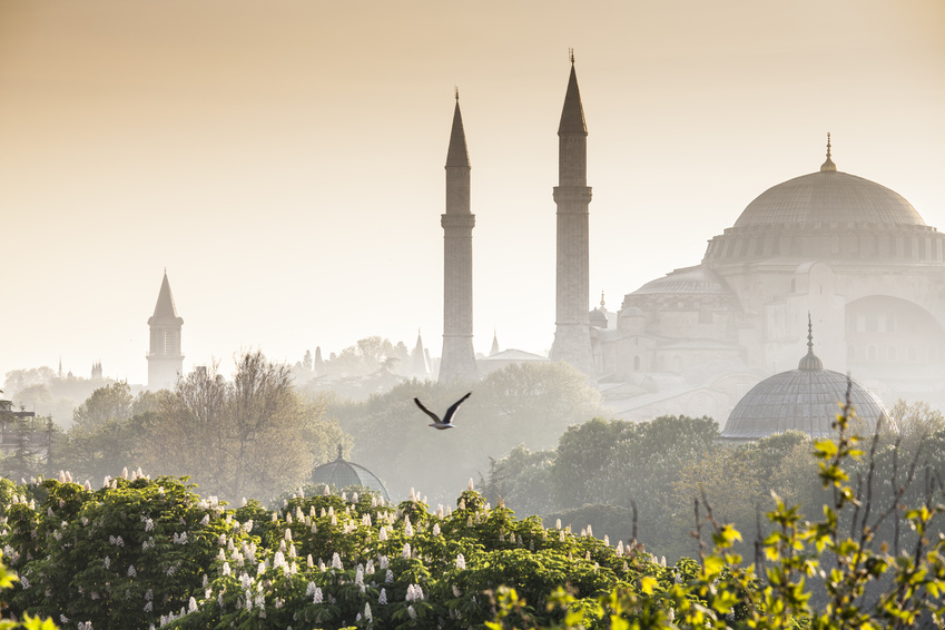 Die Blaue Mosche in Istanbul, Türkei. Sultanahmet Camii