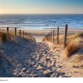 Ein Weg an der Nordsee in Holland, Niederlande bei wunderschönem Sonnenschein