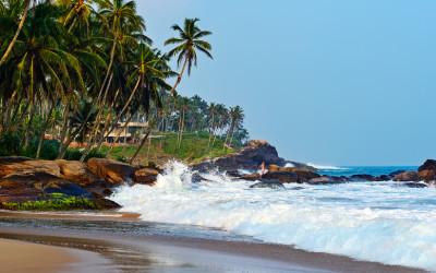 Bei einem Urlaub auf Sri Lanka aufgenommen.